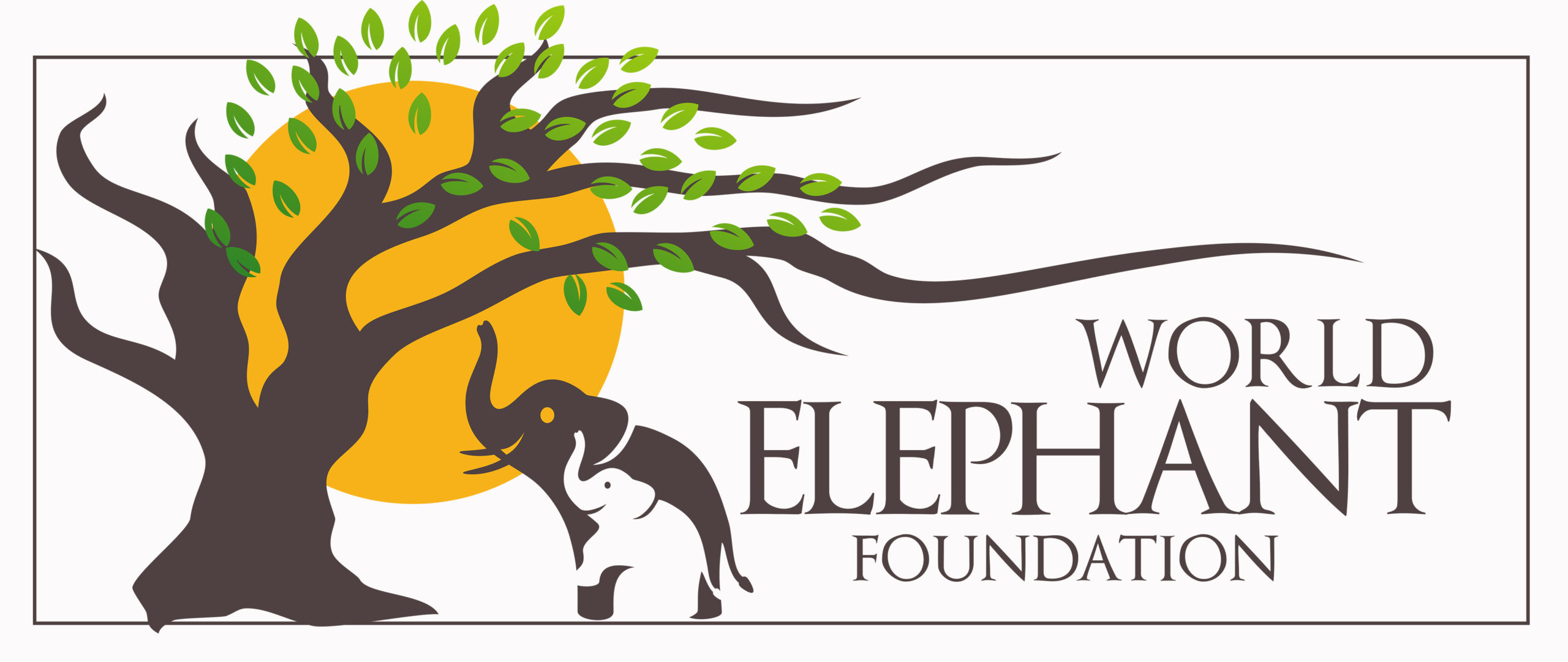 World Elephant Foundation